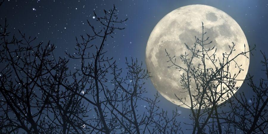 Dit betekent de volle maan op 10-jan-2020 voor jou
